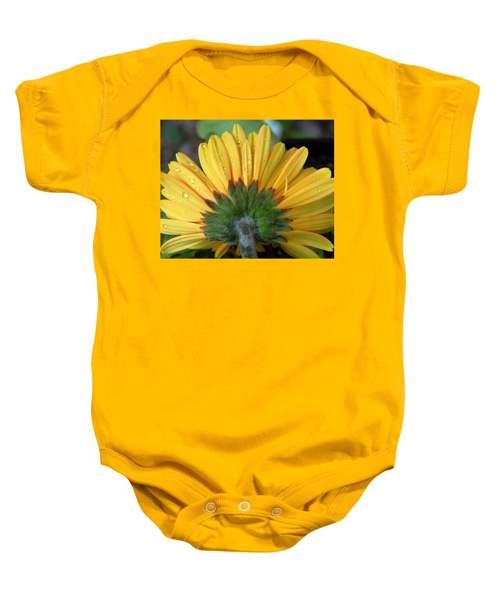 Flowers Baby Onesie featuring the photograph Water Drops On Gerbera Daisy by Amy Fose