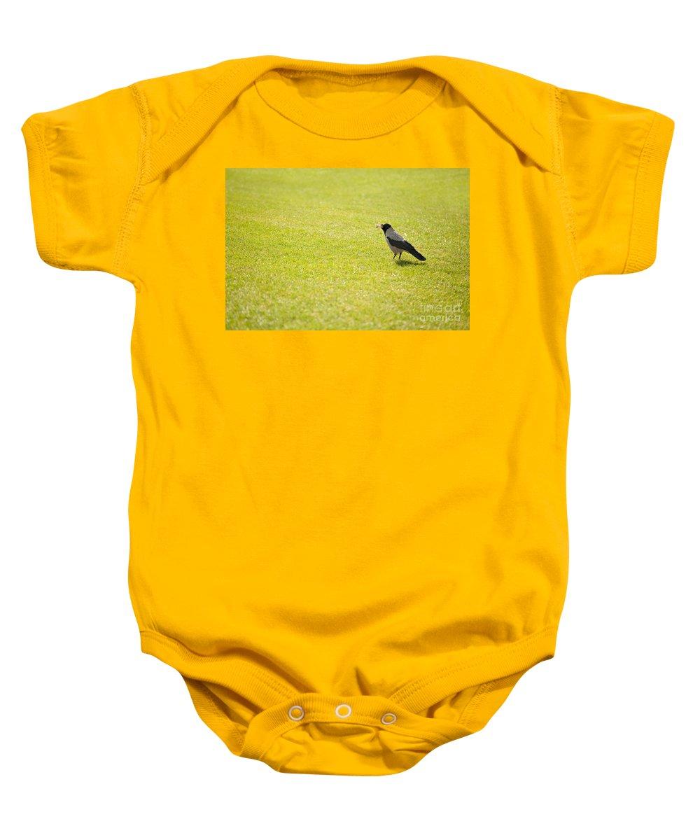 Corvus Cornix Baby Onesie featuring the photograph Hooded Crow Bird Gathering Hay by Arletta Cwalina