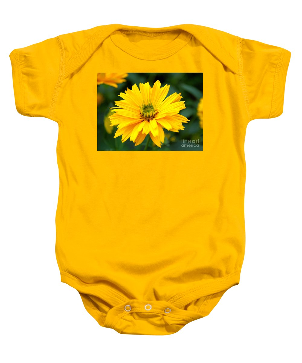 Macro Baby Onesie featuring the photograph Sun Flower by Joe Ng