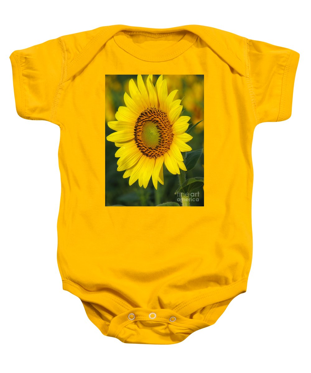 Sunflowers Baby Onesie featuring the photograph Sunflower by Amanda Barcon