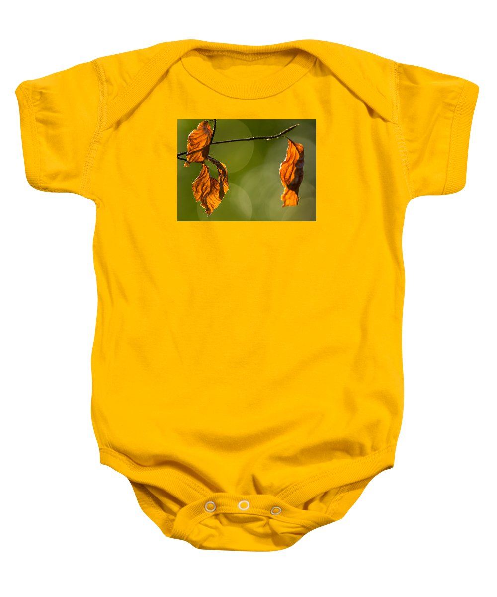 Autumn Baby Onesie featuring the photograph The Secrets Of The Forest by Jacek Tomczak
