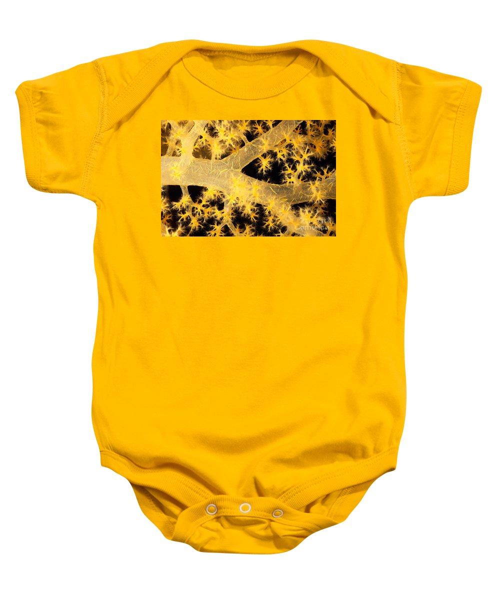 30-pfs0126 Baby Onesie featuring the photograph Alcyonarian Coral by Dave Fleetham - Printscapes