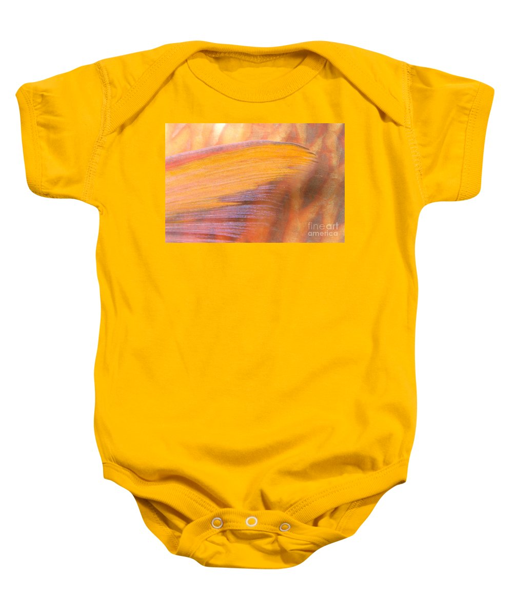 Animal Art Baby Onesie featuring the photograph Underwater Close-up by Dave Fleetham - Printscapes