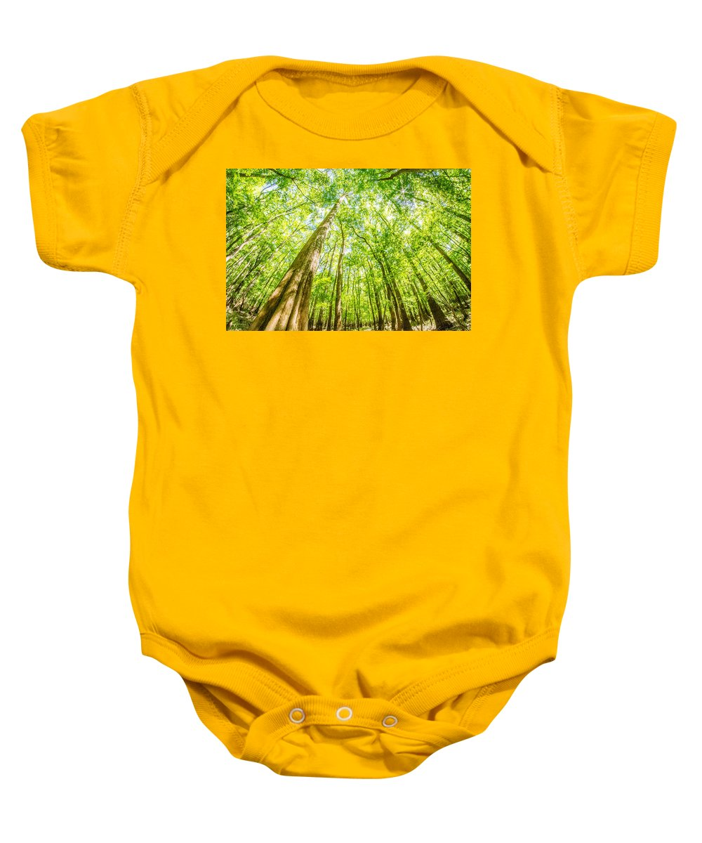 Carolina Baby Onesie featuring the photograph cypress forest and swamp of Congaree National Park in South Caro by Alex Grichenko