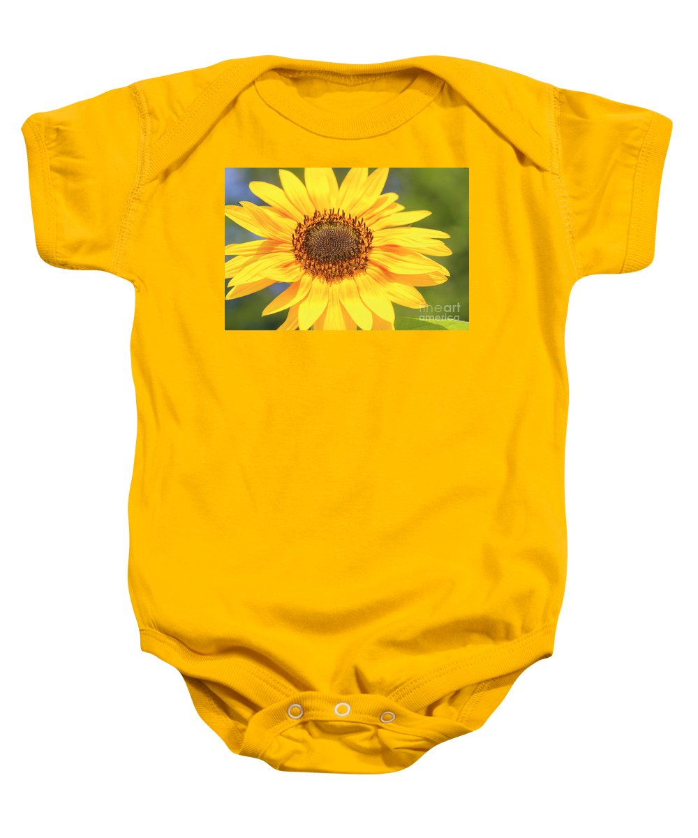 Flower Baby Onesie featuring the photograph Aburst Of Yellow by Robert Pearson
