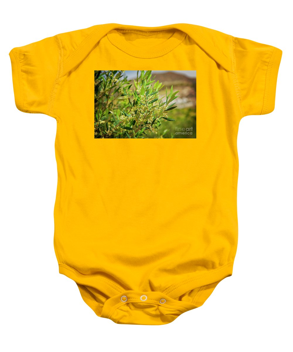 Crete Baby Onesie featuring the photograph An Olive Tree by Sophie McAulay