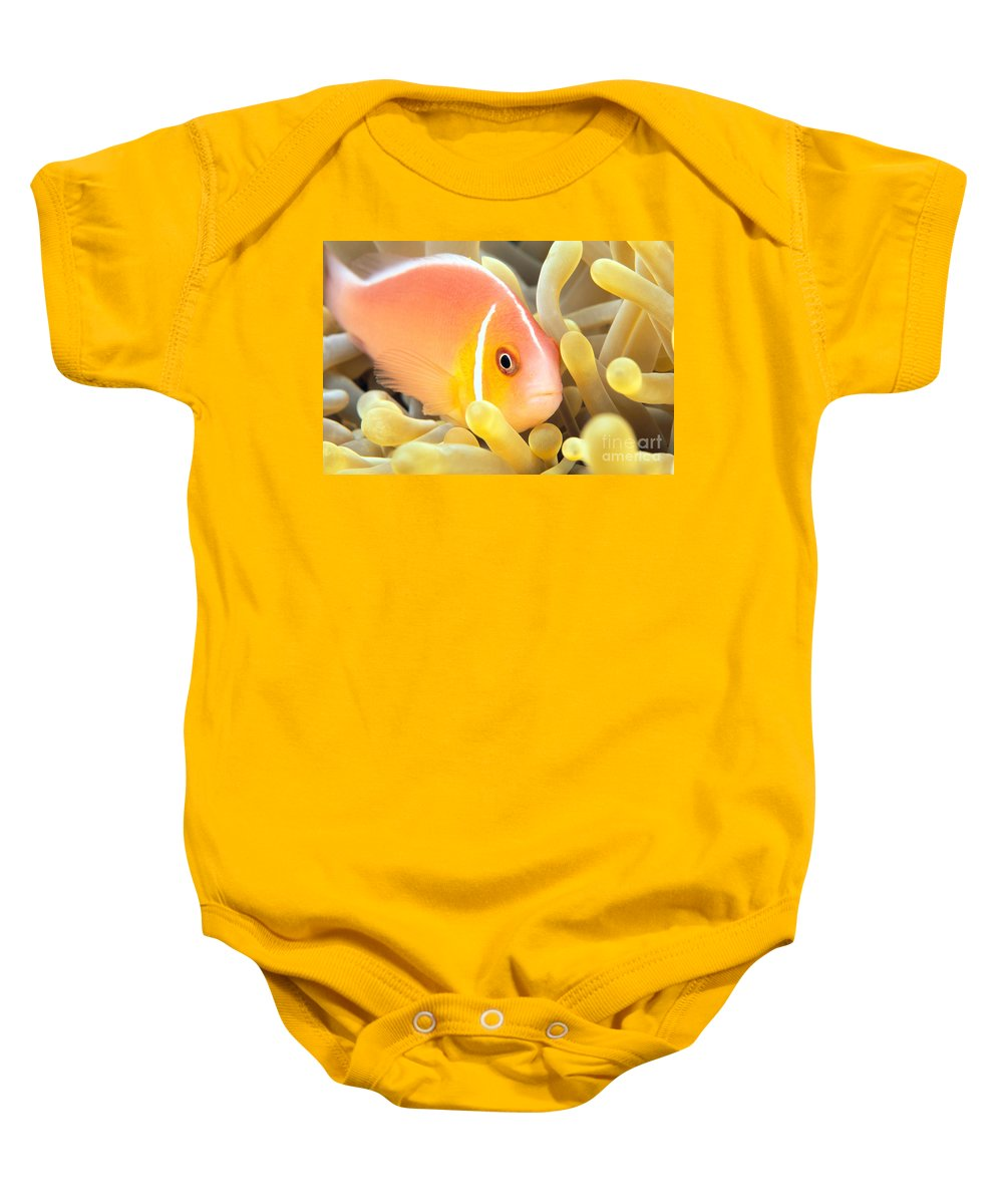 30-pfs0127 Baby Onesie featuring the photograph Anemone, Close-up by Dave Fleetham - Printscapes