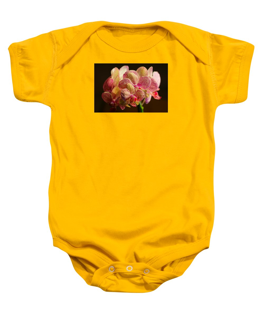 Bloom Baby Onesie featuring the photograph Beauty Up Close 4 by Dimitry Papkov