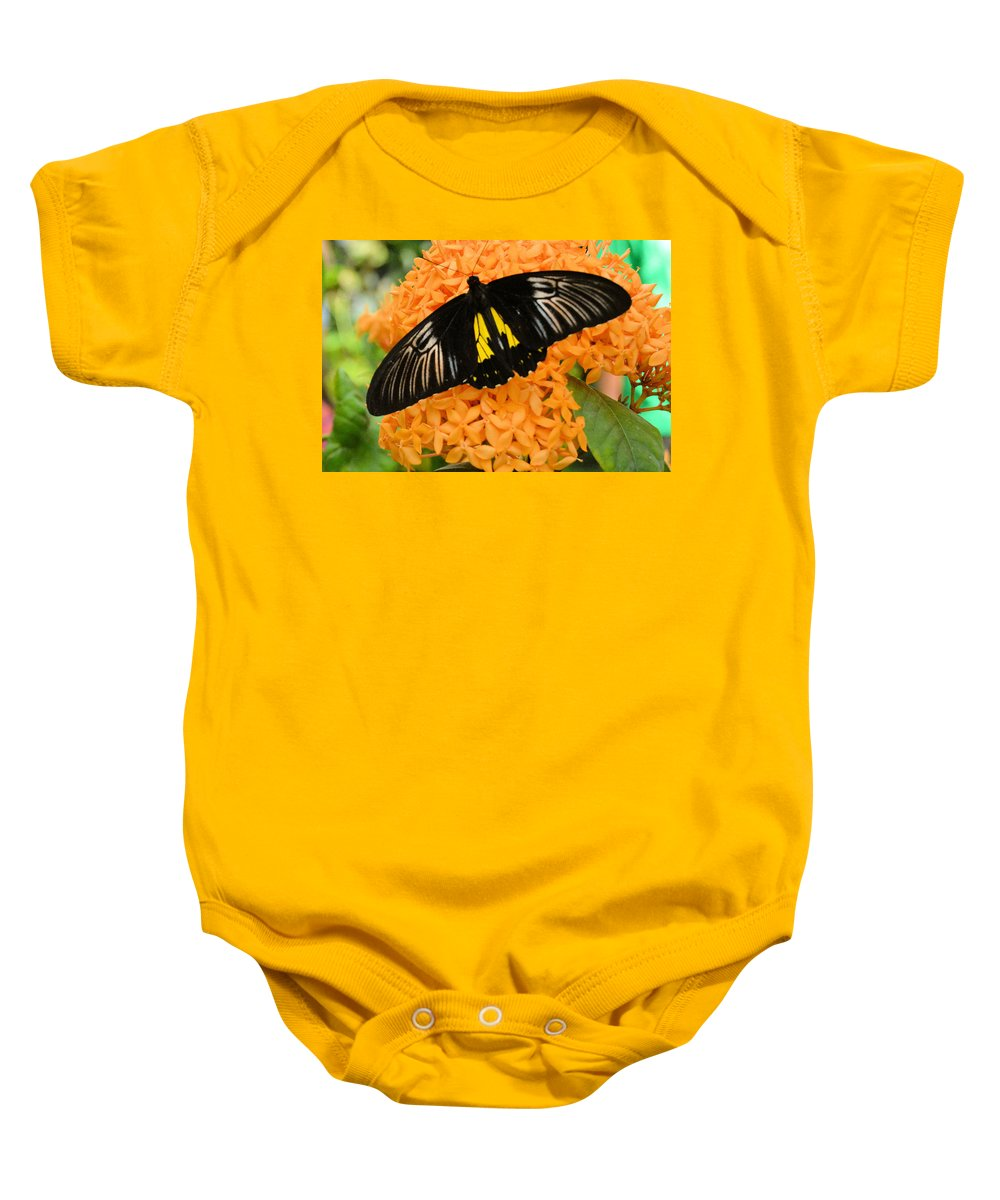 Flower Baby Onesie featuring the photograph Black Butterfly by Wendy Fox