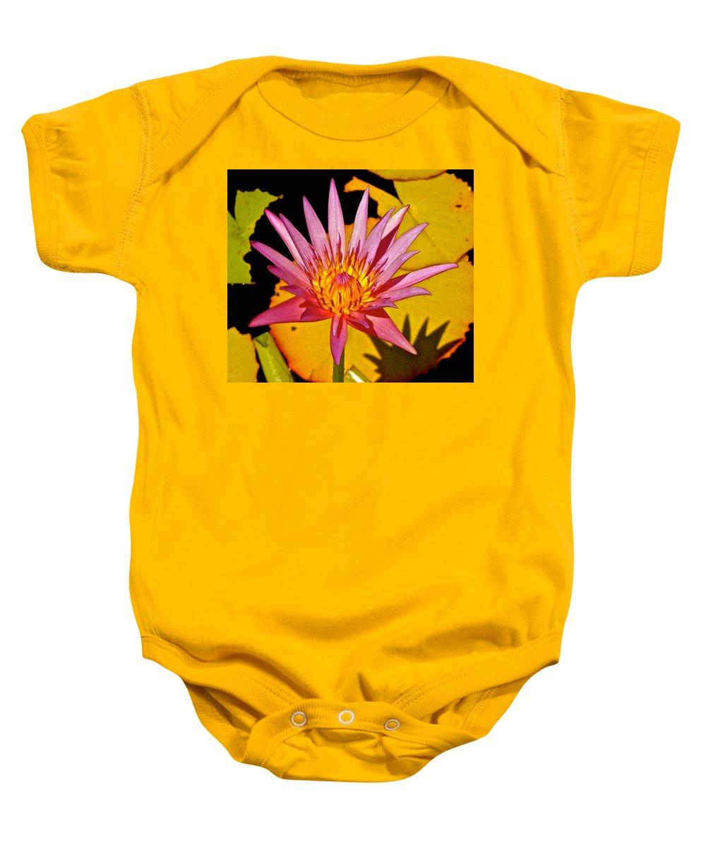 Lotus Baby Onesie featuring the photograph Blooming Lotus Flower by Joe Wyman