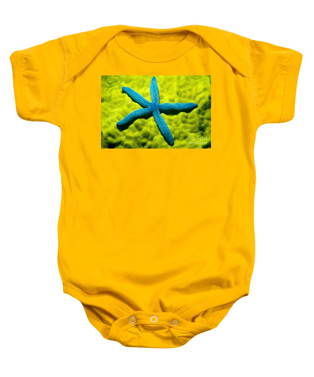Animal Art Baby Onesie featuring the photograph Blue Starfish On Poritirs by Mitch Warner - Printscapes