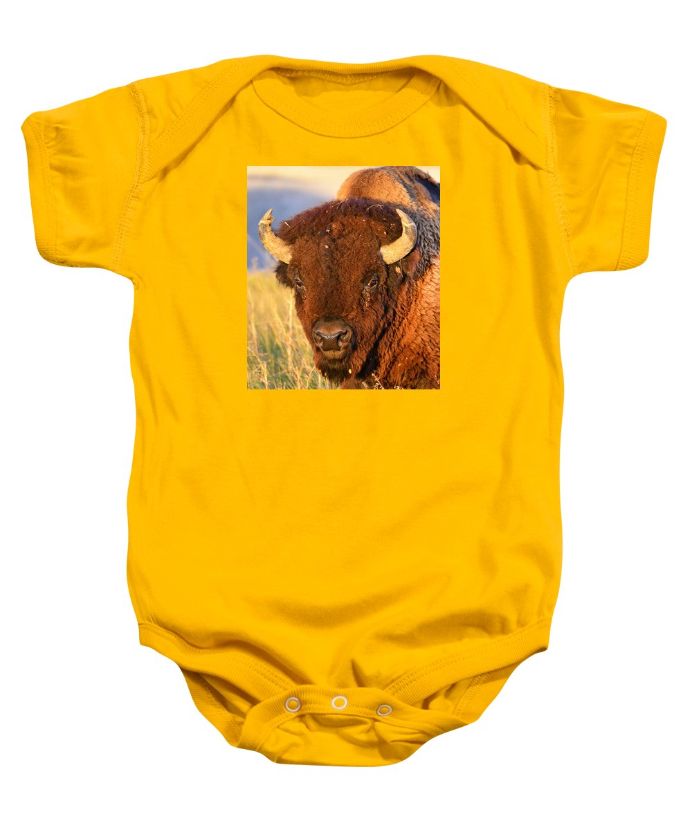 Buffalo Baby Onesie featuring the photograph Buff In The Badlands by Jeffrey Hamilton