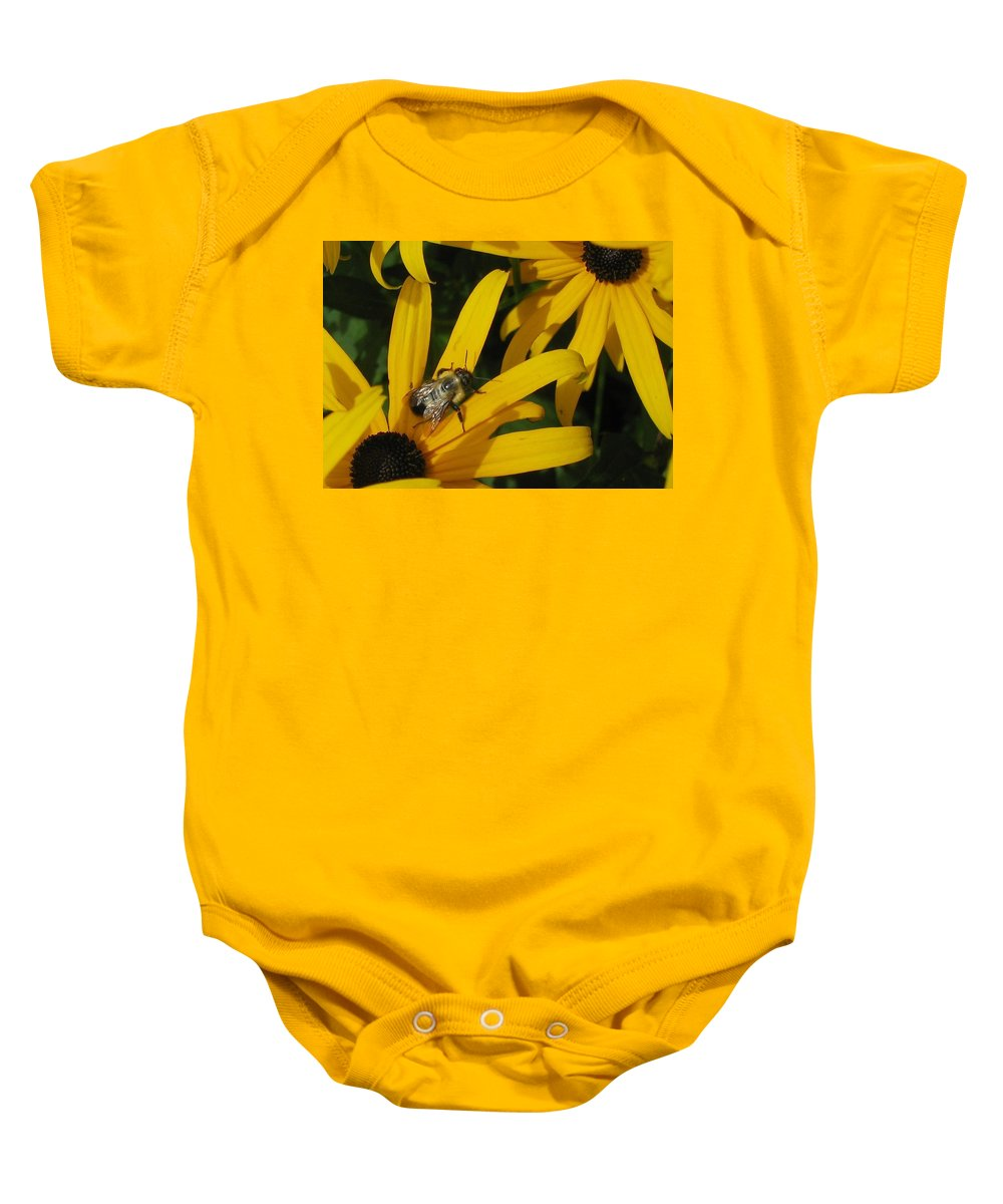 Black Baby Onesie featuring the photograph Bumble Bee Sitting On Black-eyed Susan by GinA Captured Images of Maine