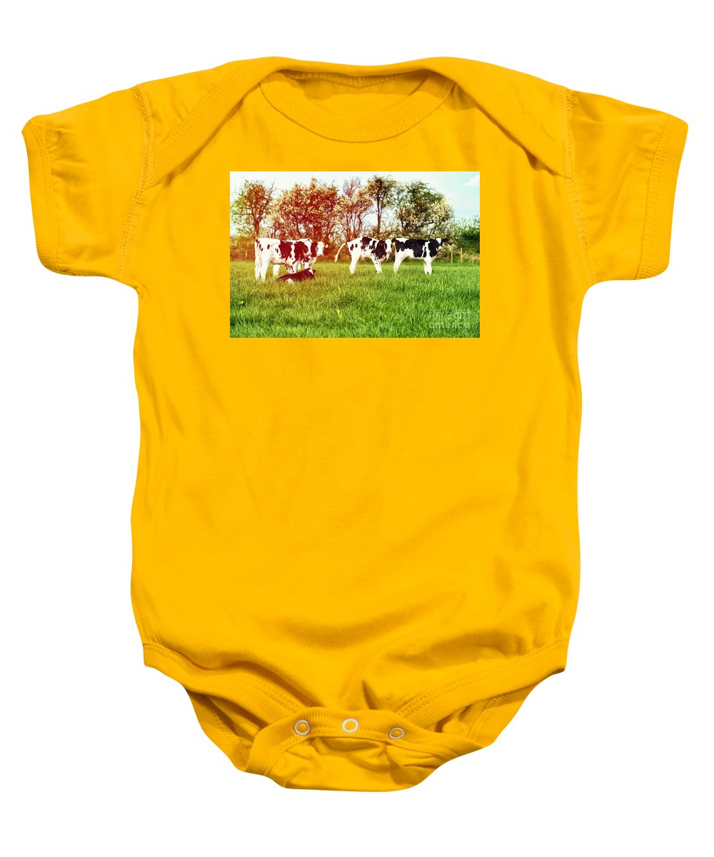 Farming Baby Onesie featuring the photograph Calves In Spring Field by Amanda Elwell