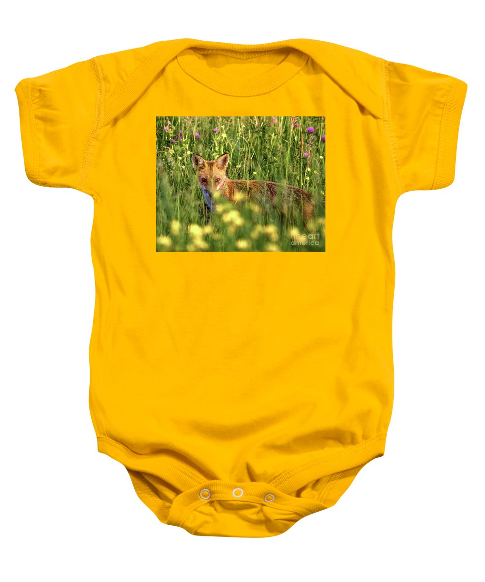 Wildlife Baby Onesie featuring the photograph Can You See Me by Rod Best