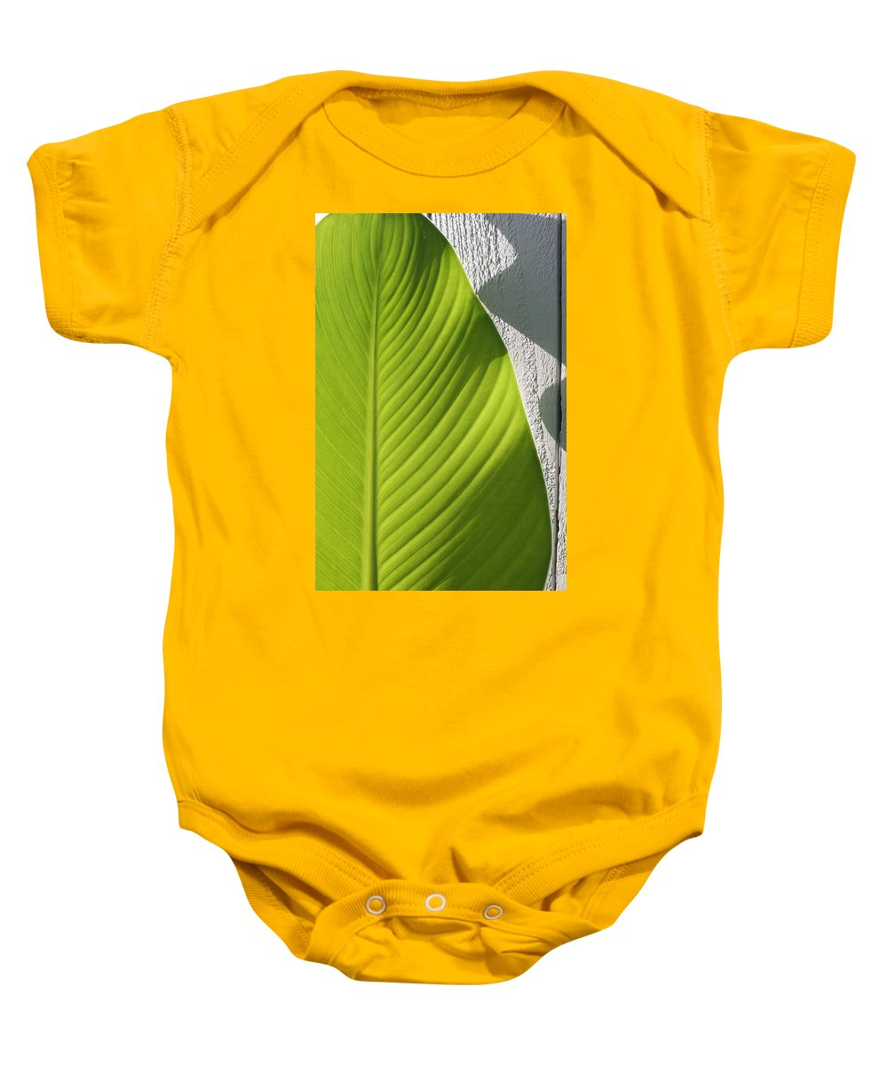 Canna Leaf Baby Onesie featuring the photograph Canna by Katherine Parker