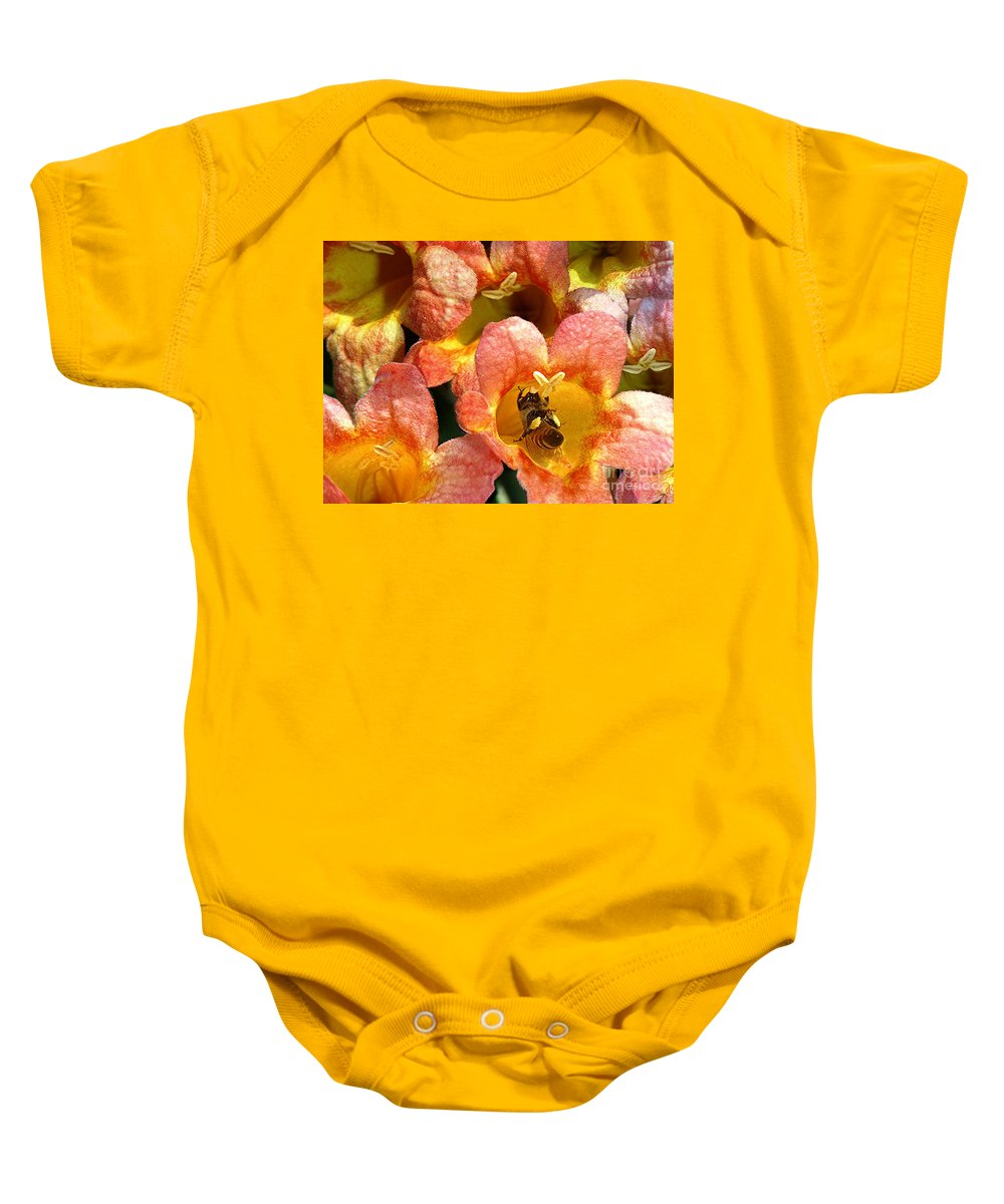 Nature Baby Onesie featuring the photograph Caught Up In The Work by Lucyna A M Green