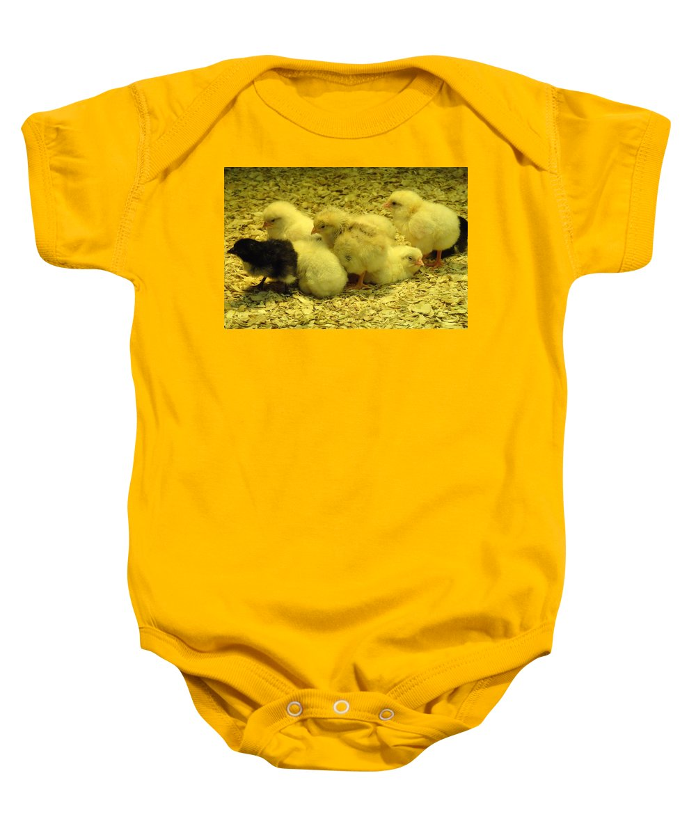 Baby Baby Onesie featuring the photograph Chicks by Laurel Best