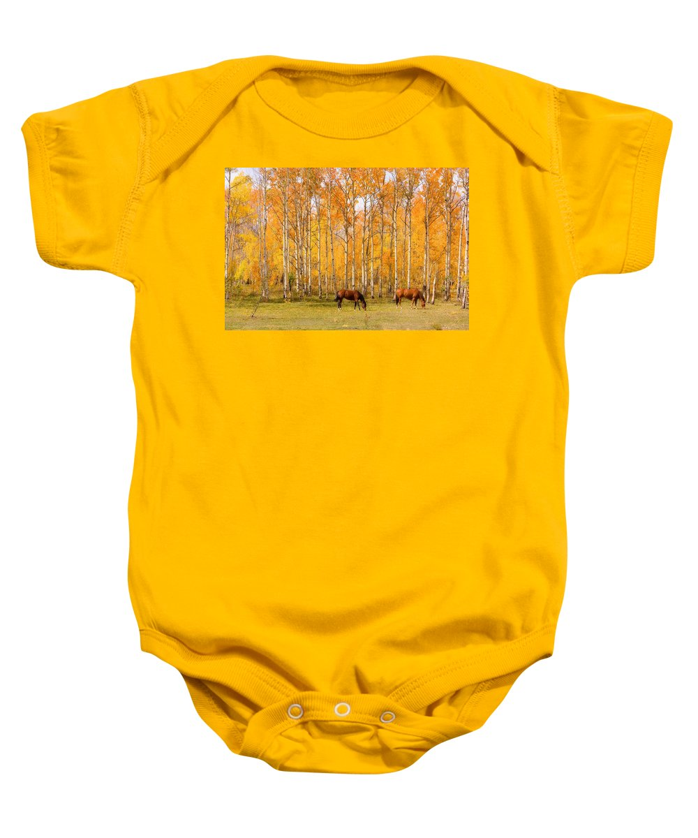 Country Baby Onesie featuring the photograph Colorful Autumn High Country Landscape by James BO Insogna