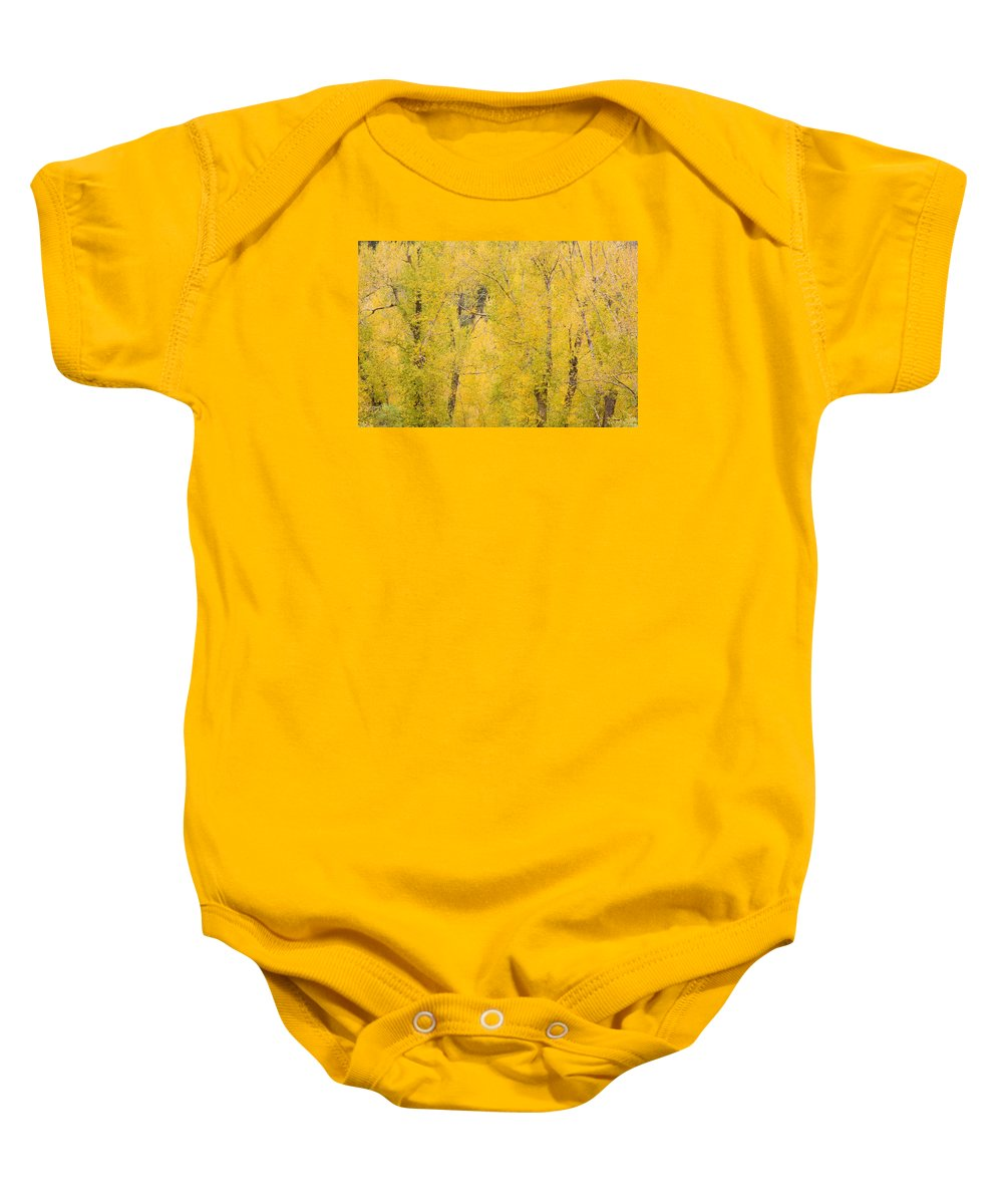 Yellow Baby Onesie featuring the photograph Cottonwood Autumn Colors by James BO Insogna
