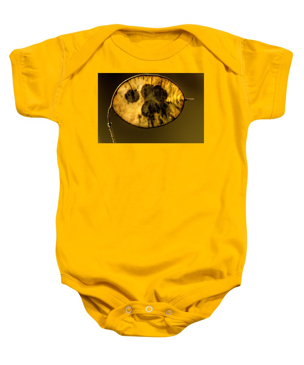 Seeds Baby Onesie featuring the photograph Dried Out Leaf With Seeds by Wolfgang Stocker