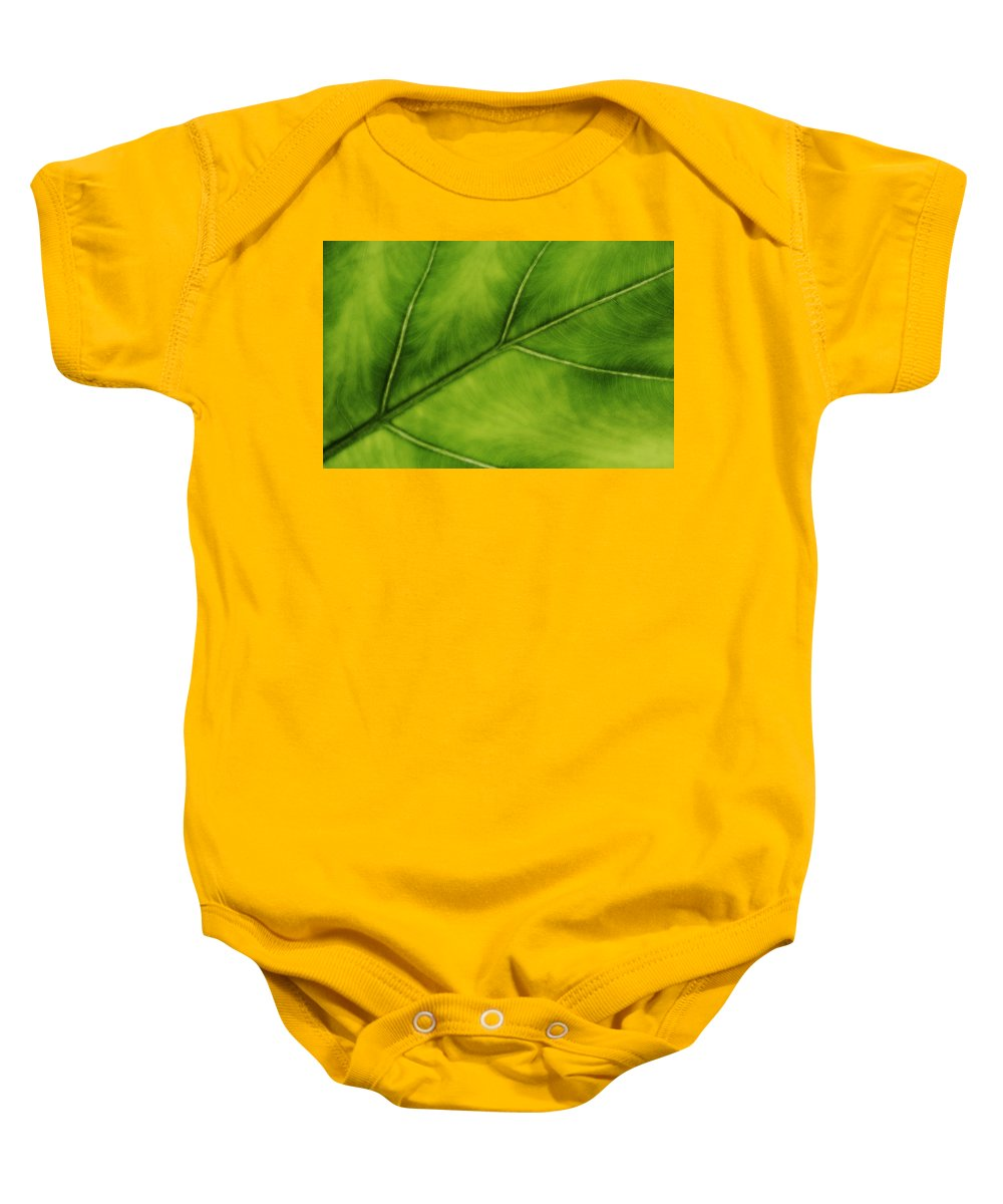 Leaf Baby Onesie featuring the photograph Elephant Ear by Marilyn Hunt