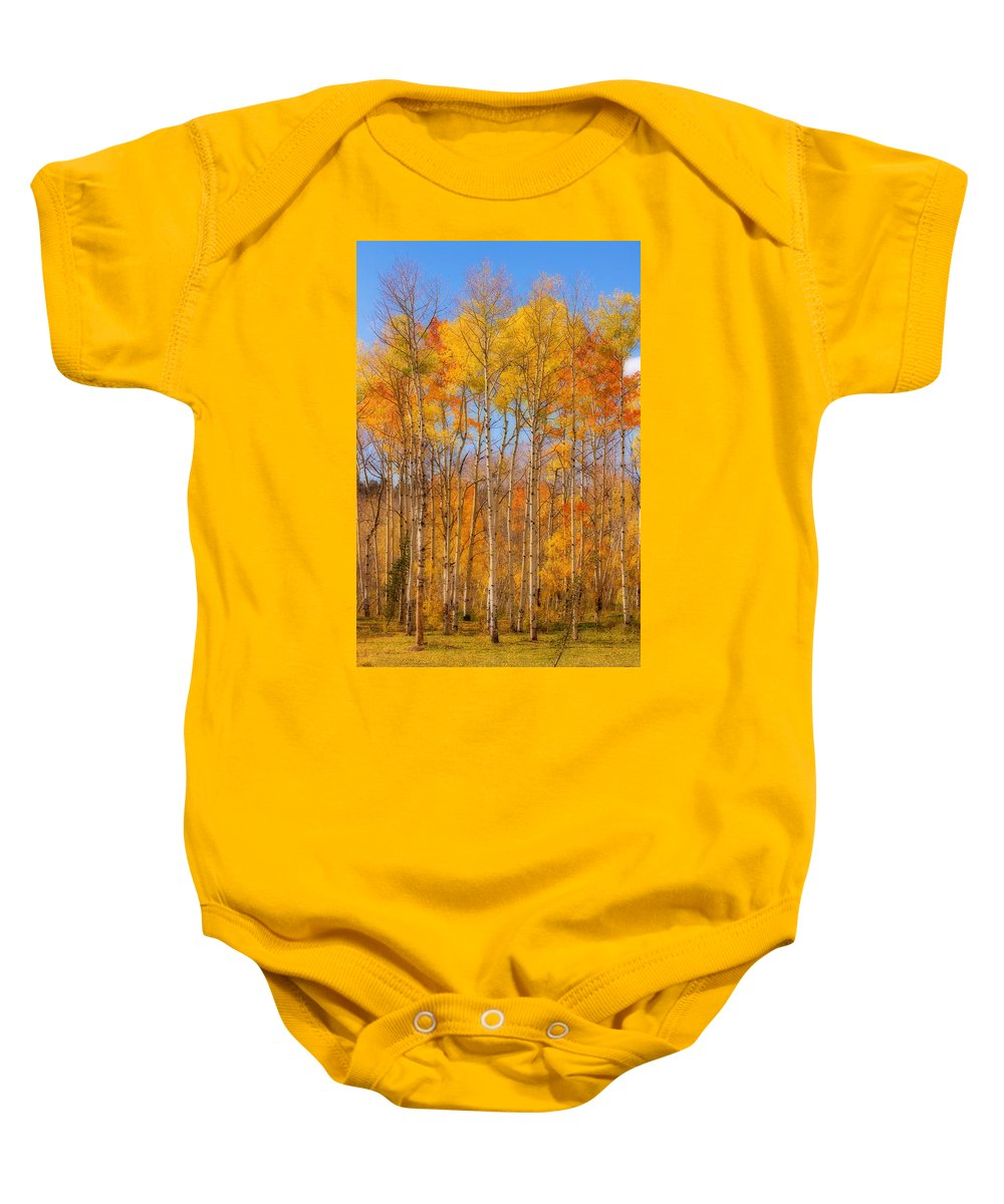 Trees Baby Onesie featuring the photograph Fall Foliage Color Vertical Image Orton by James BO Insogna