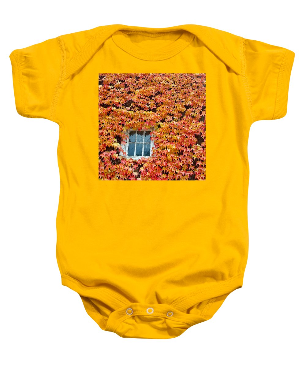 Leaves Baby Onesie featuring the photograph Fall Window by Lindy Pollard