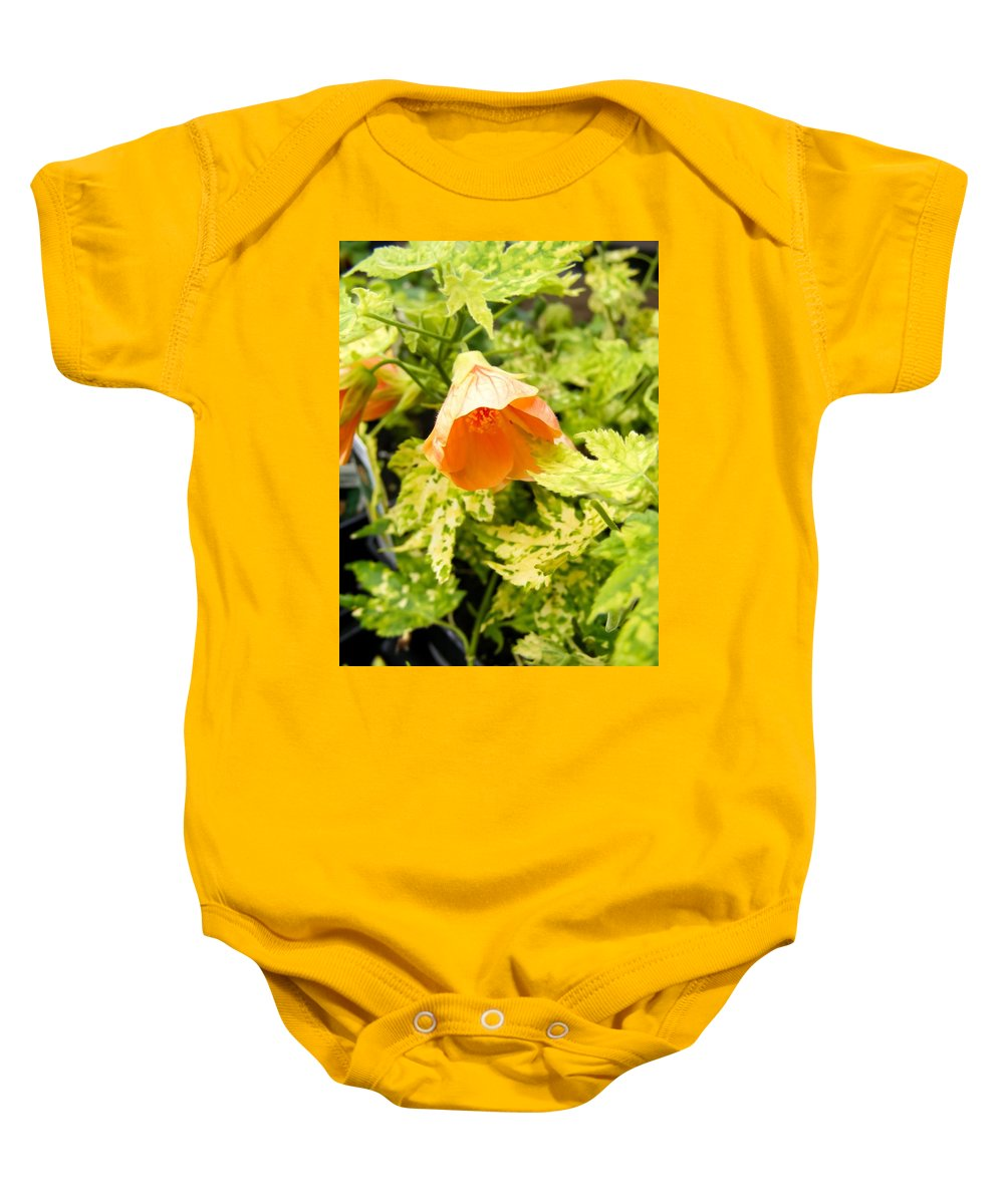 Flowering Maple Baby Onesie featuring the photograph Flowering Maple by Cynthia Woods