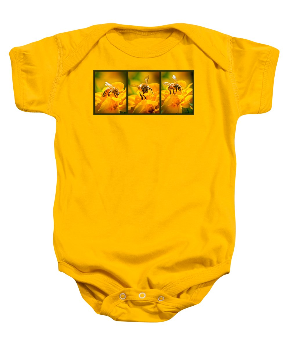 Bees Baby Onesie featuring the photograph Gathering Pollen Triptych by Bob Orsillo
