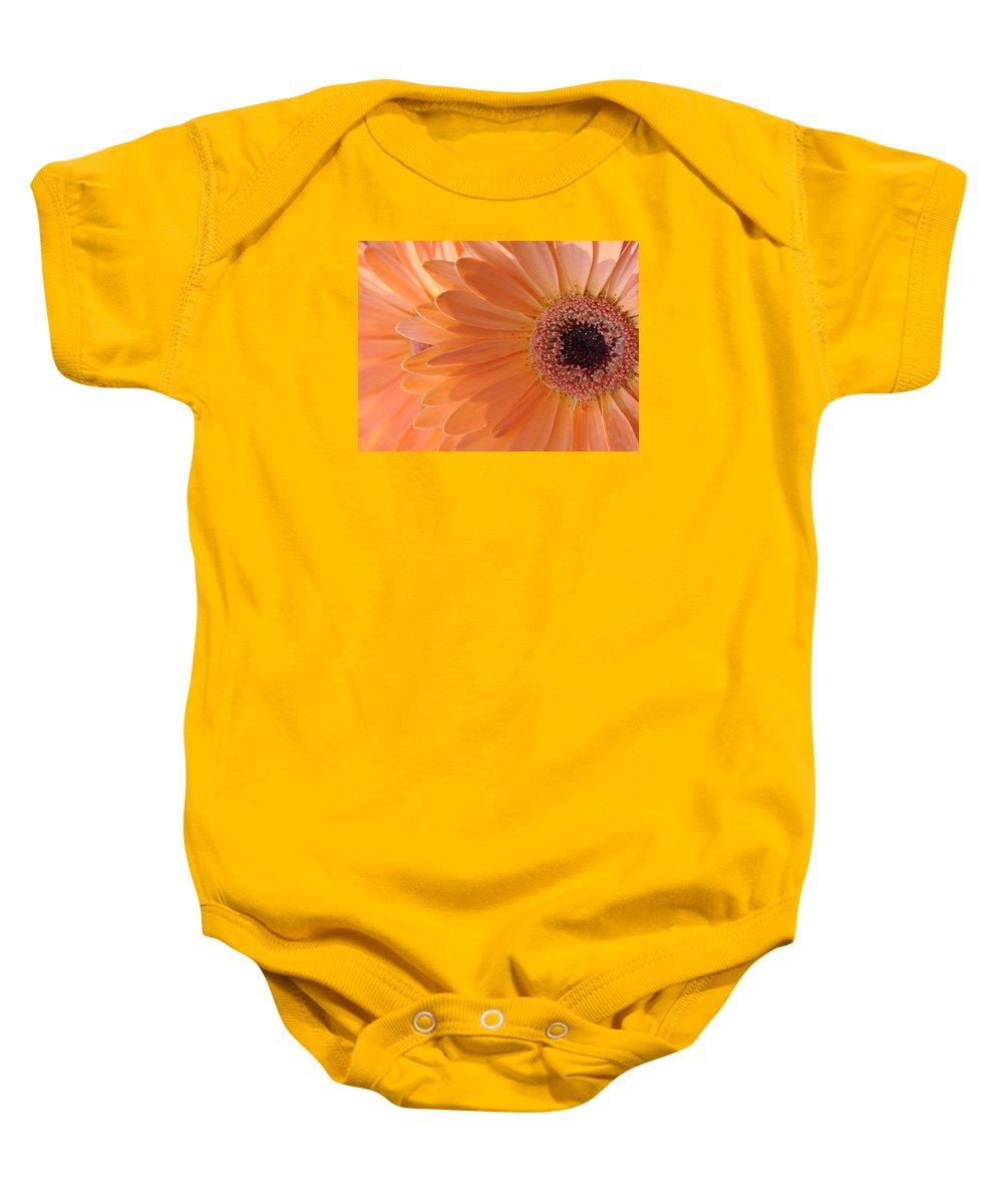 Gerbera Baby Onesie featuring the photograph Gerbera Daisy by Mary Halpin