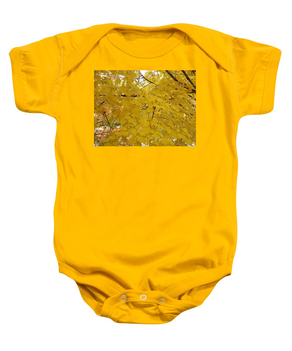Fall Autum Trees Maple Yellow Baby Onesie featuring the photograph Golden Canopy by Karin Dawn Kelshall- Best