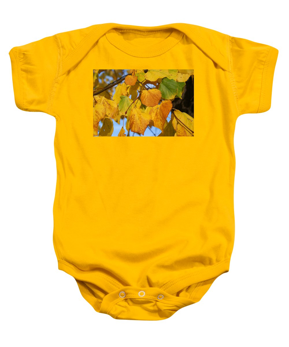 Autumn Baby Onesie featuring the photograph Golden by Carol Lynch