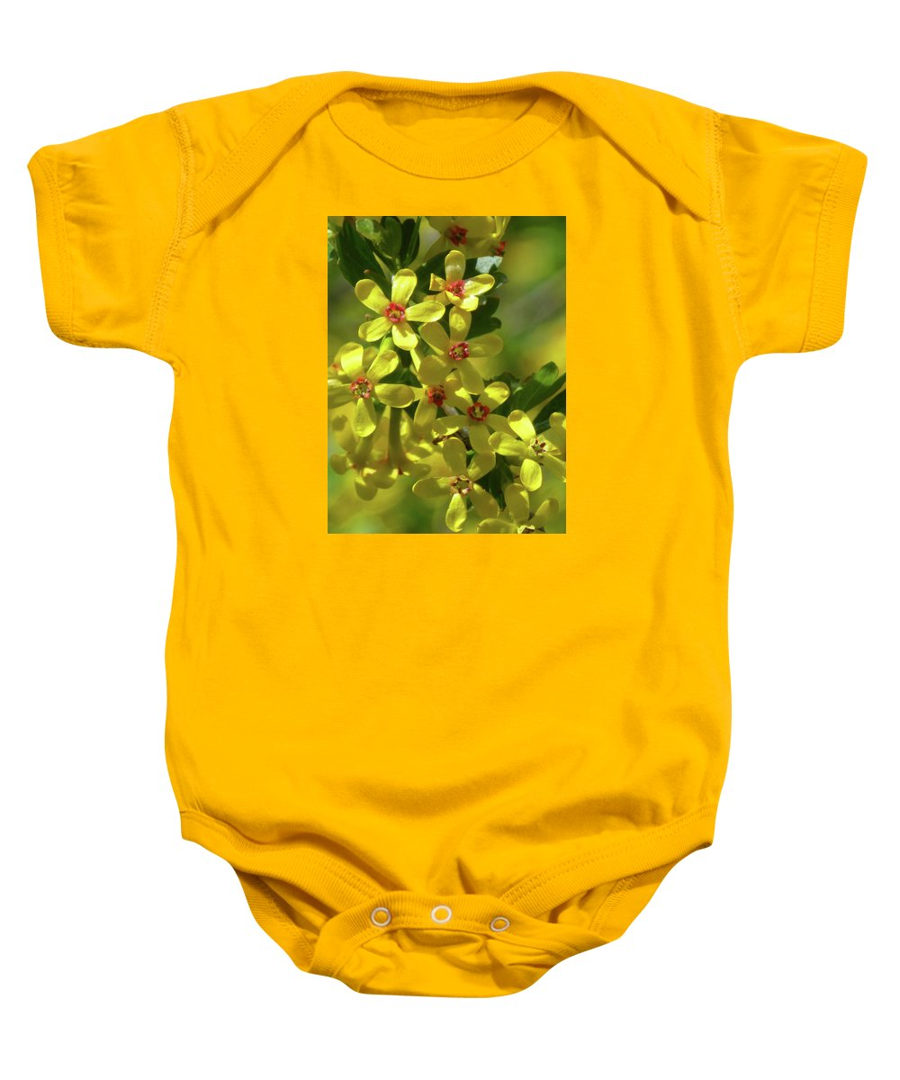 North Dakota Baby Onesie featuring the photograph Golden Currant Blossoms by Cris Fulton