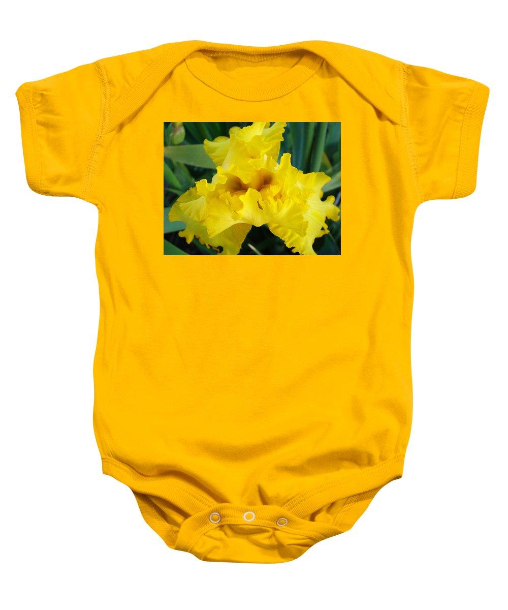�irises Artwork� Baby Onesie featuring the photograph Golden Yellow Iris Flower Garden Irises Flora Art Prints Baslee Troutman by Baslee Troutman