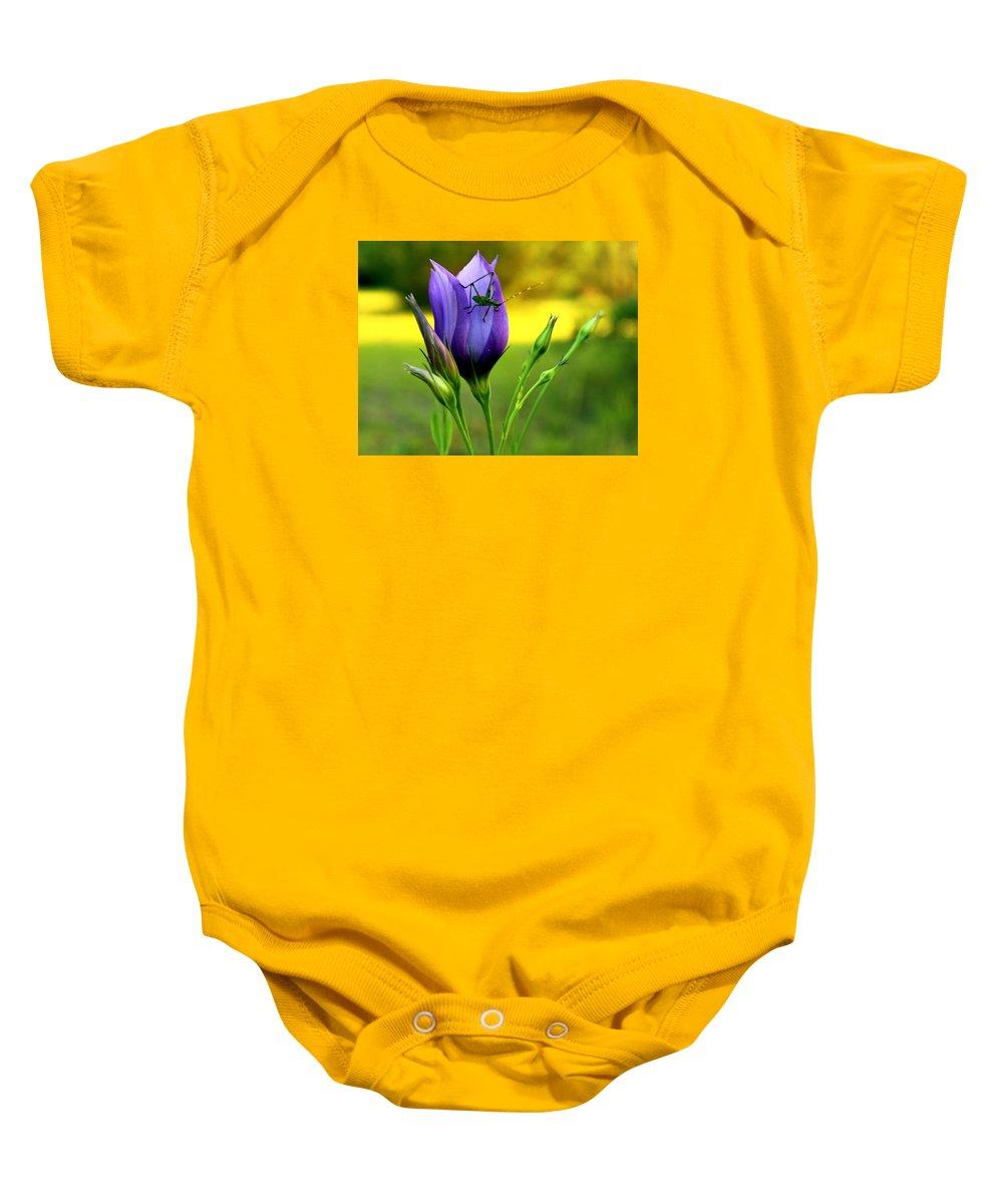 Grass Hopper On A Purple Flower Baby Onesie featuring the photograph Grass Hopper Having Lunch by Derek Roberts