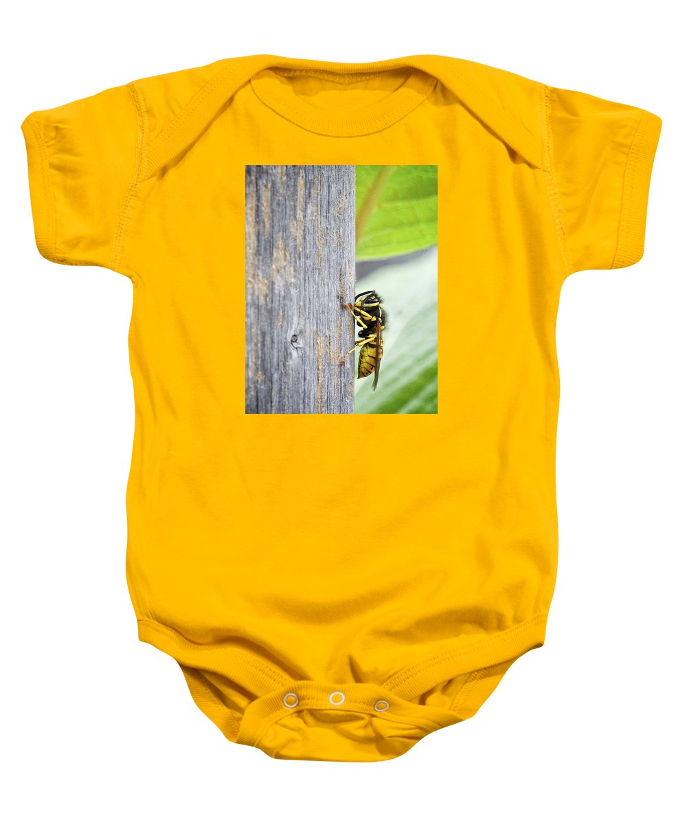 Hanging On Baby Onesie featuring the photograph Hanging On by Robert Skuja