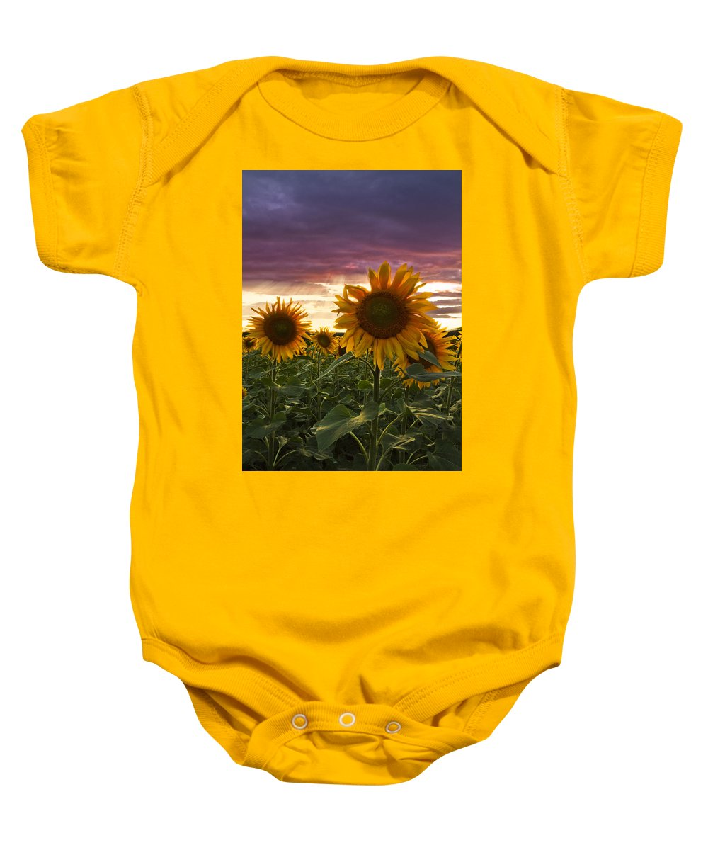 Appalachia Baby Onesie featuring the photograph Happiness Is A Field Of Sunflowers by Debra and Dave Vanderlaan