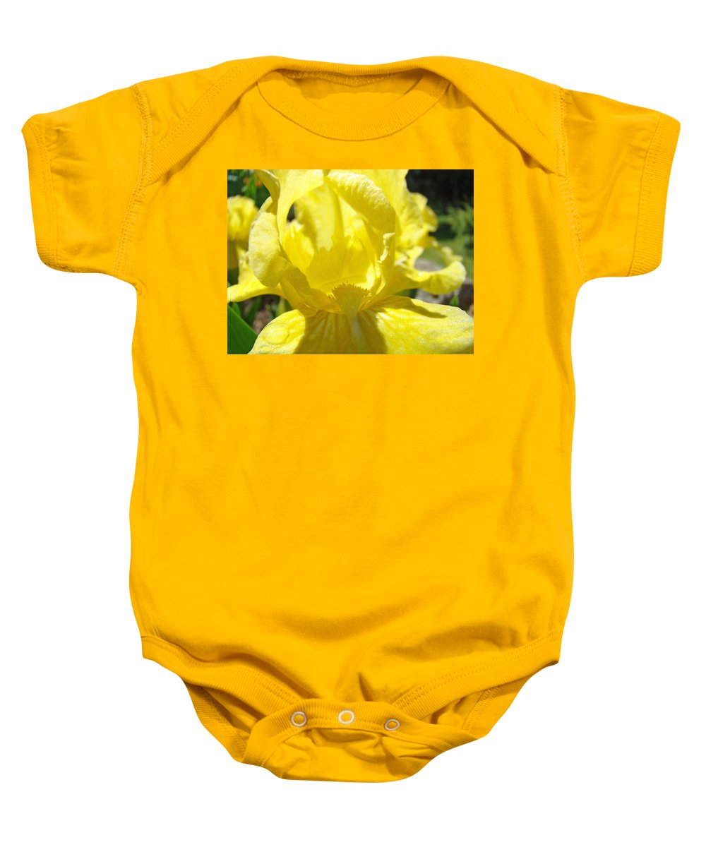 �irises Artwork� Baby Onesie featuring the photograph Iris Flower Yellow Macro Close Up Irises 30 Sunlit Iris Art Print Baslee Troutman by Baslee Troutman