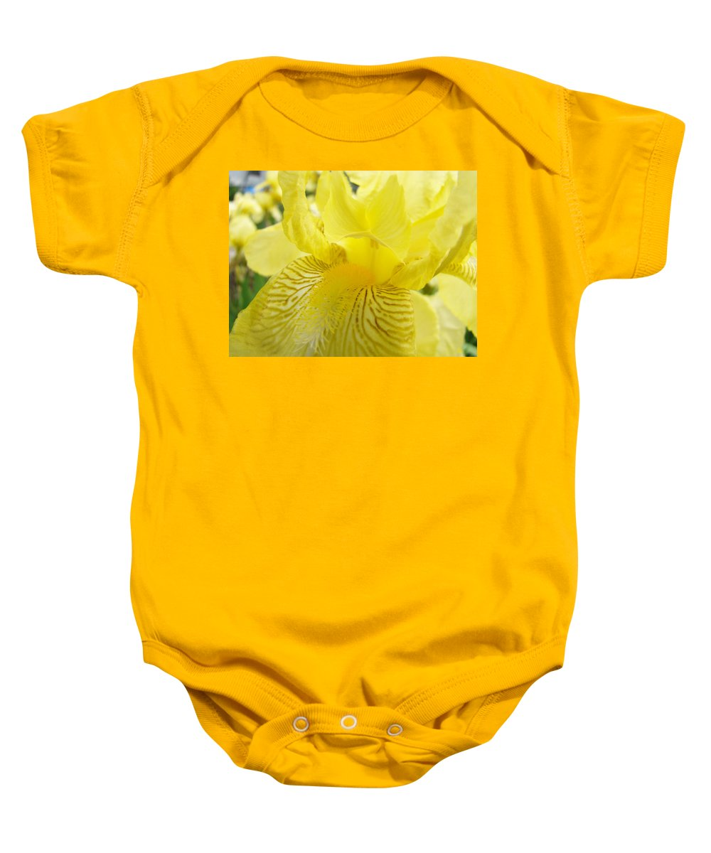 �irises Artwork� Baby Onesie featuring the photograph Irises Yellow Brown Iris Flowers Irises Art Prints Baslee Troutman by Baslee Troutman