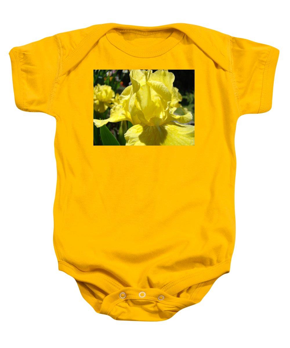 �irises Artwork� Baby Onesie featuring the photograph Irises Yellow Iris Flowers Floral Art Prints Botanical Garden Artwork Giclee by Baslee Troutman