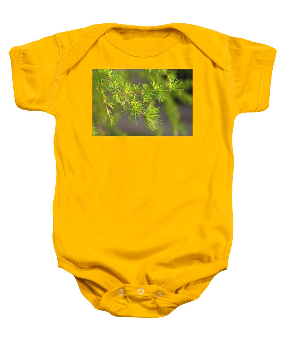 Green Baby Onesie featuring the photograph Larch Branch And Foliage by Nathan Abbott