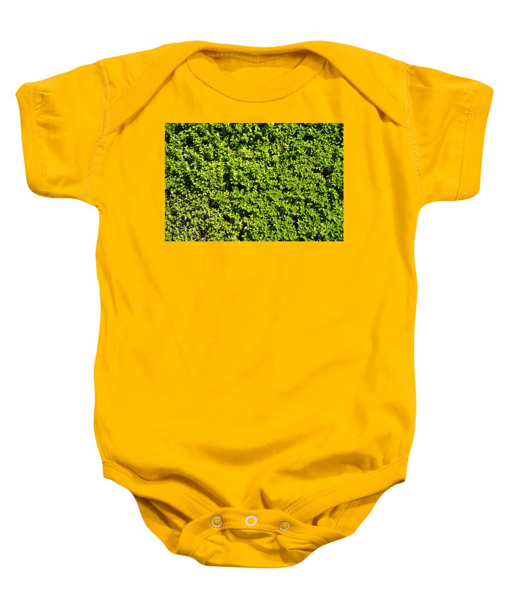 Leaves Baby Onesie featuring the photograph Privacy Hedge by Erik Burg
