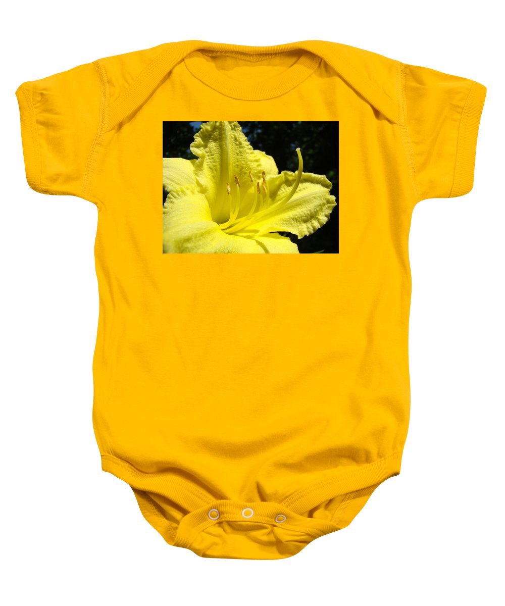 Lilies Baby Onesie featuring the photograph Lily Flower Artwork Yellow Lilies 1 Giclee Art Prints Baslee Troutman by Baslee Troutman