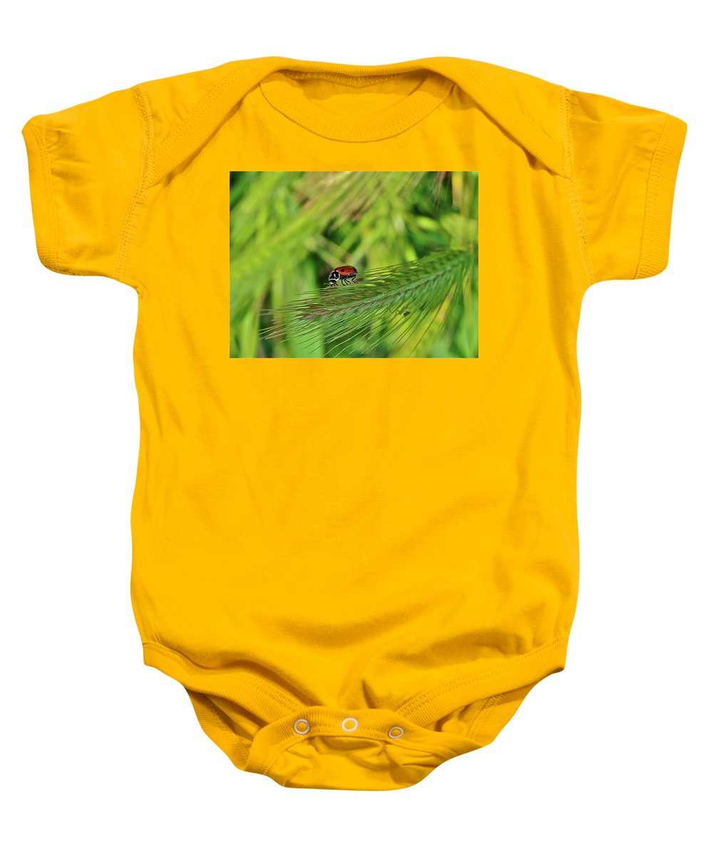 Ladybug Baby Onesie featuring the photograph Little Lady by Diana Hatcher