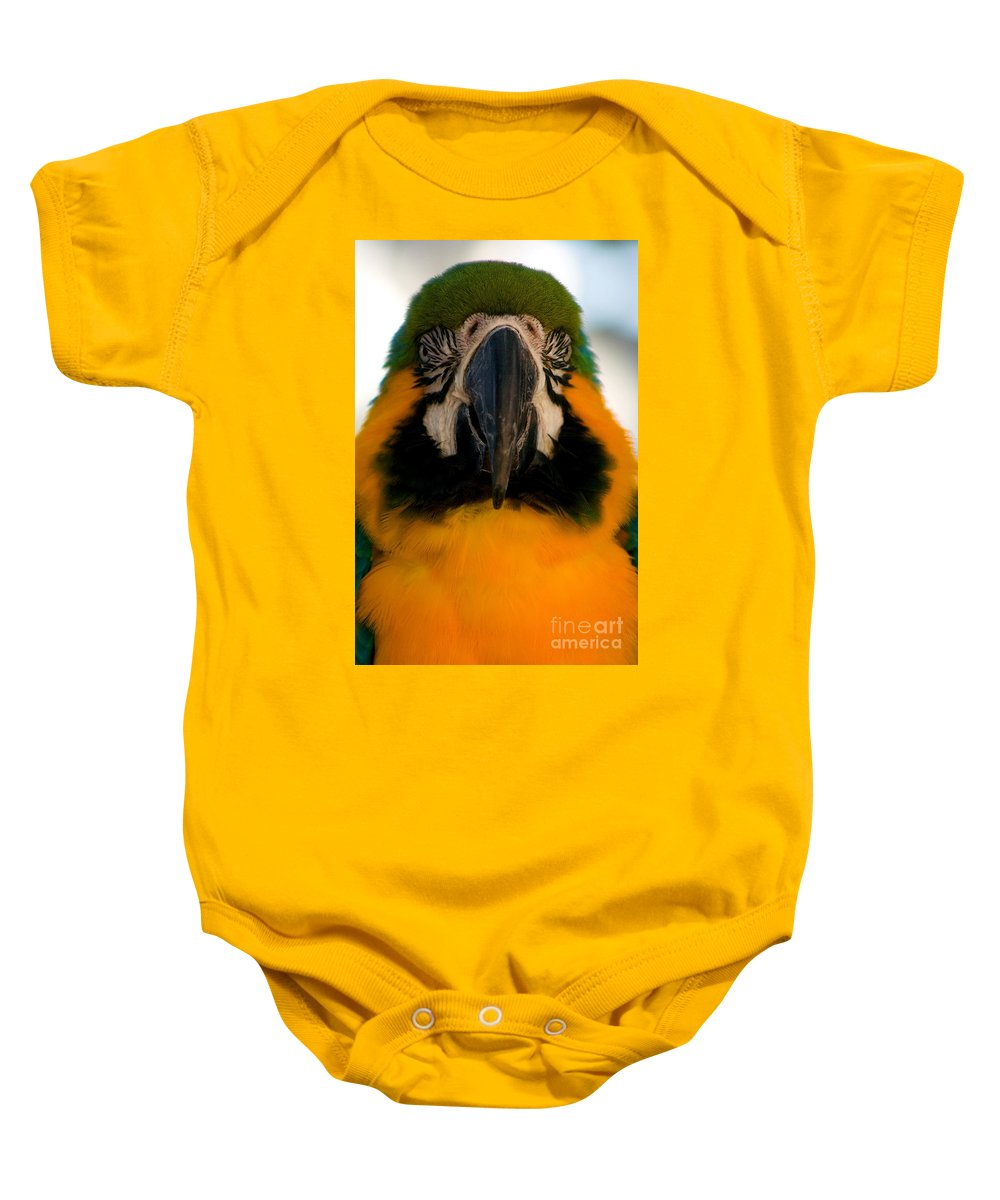 Macaw Baby Onesie featuring the photograph Macaw IIi by Thomas Marchessault