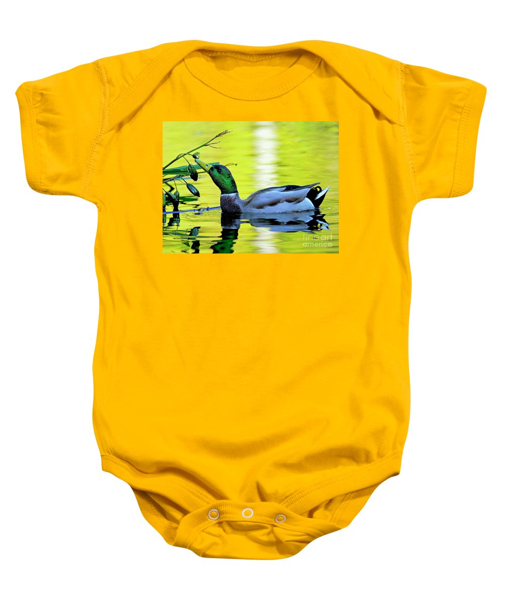 Mallard Baby Onesie featuring the photograph Mallard Eating Seed Pod 2 by Sharon Talson