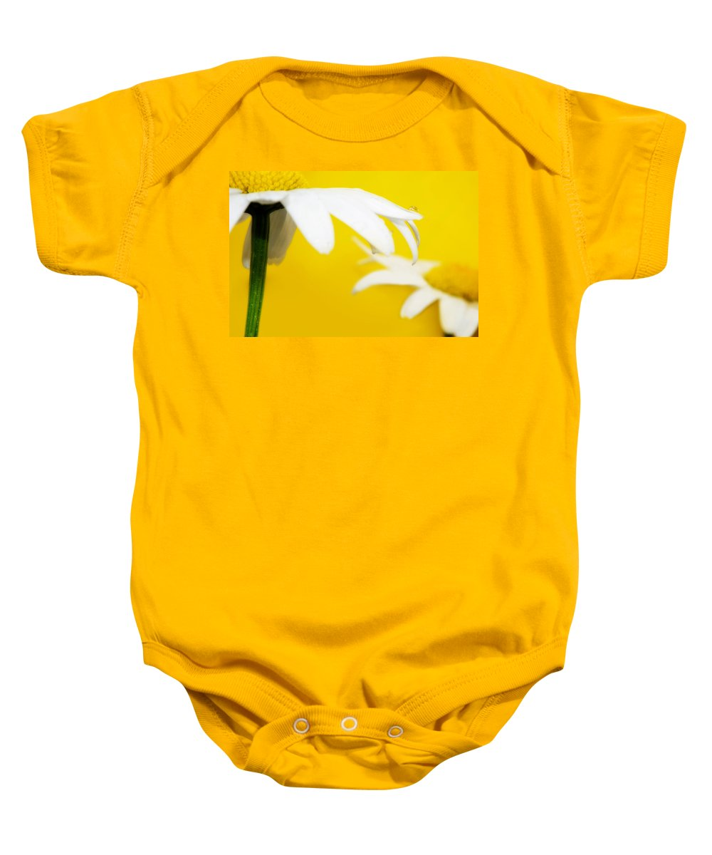 Lisa Knechtel Baby Onesie featuring the photograph Mellow Yellow by Lisa Knechtel