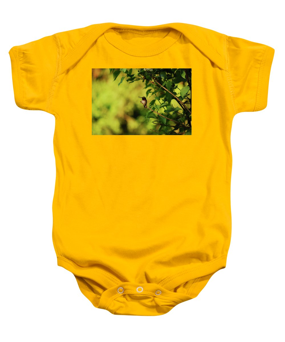 Hummingbird Baby Onesie featuring the photograph My Little Visitor by Lori Tambakis