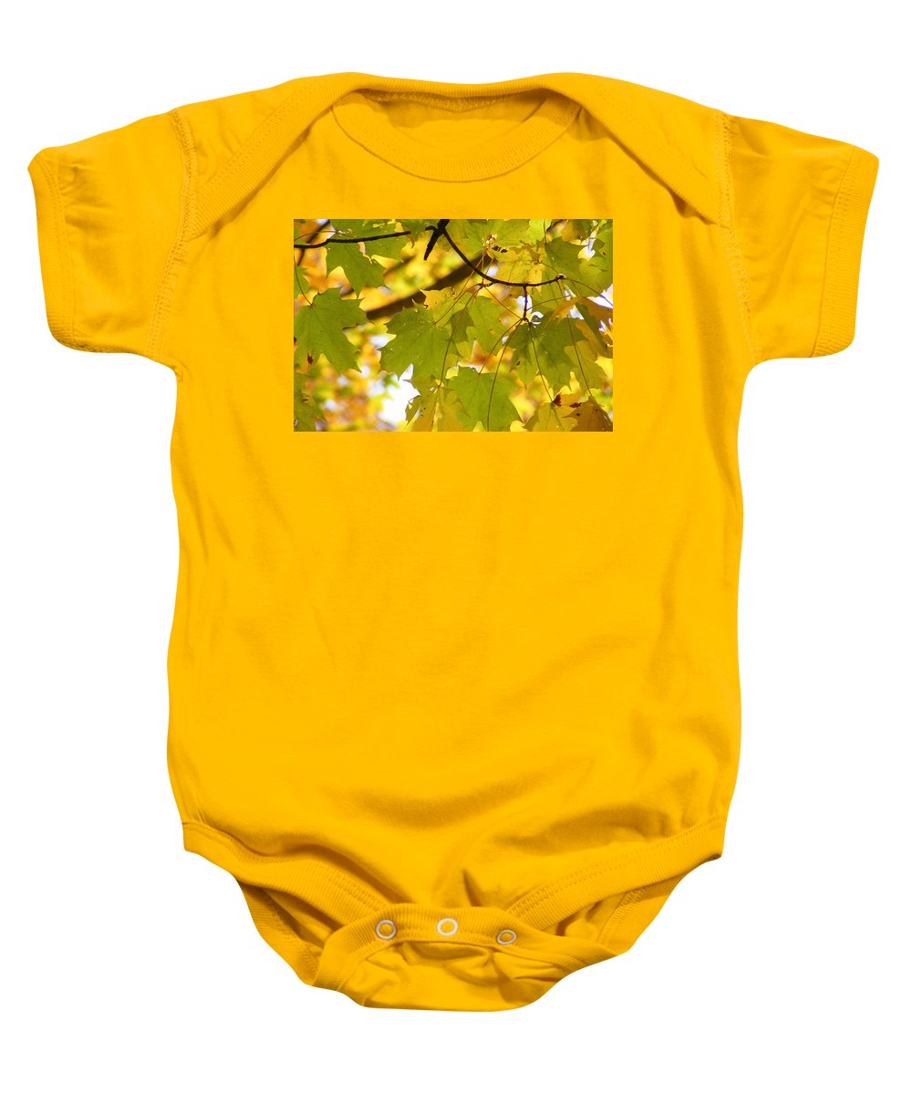 Leaves Baby Onesie featuring the photograph Natures Glow by Ed Smith